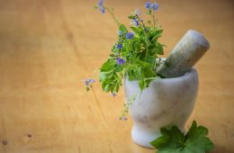 Fytotherapie Phytotherapy